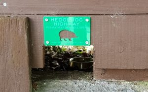 Hole cut into bottom of wooden fence with sign saying Hedgeho highway - please keep his hole open