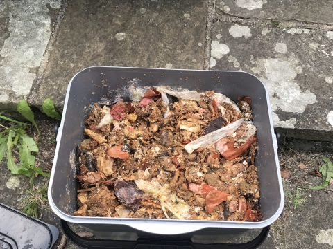 plastic bucket full of food waste, all brown in colour.